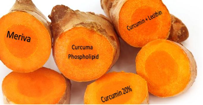Meriva Curcumin Phytosome