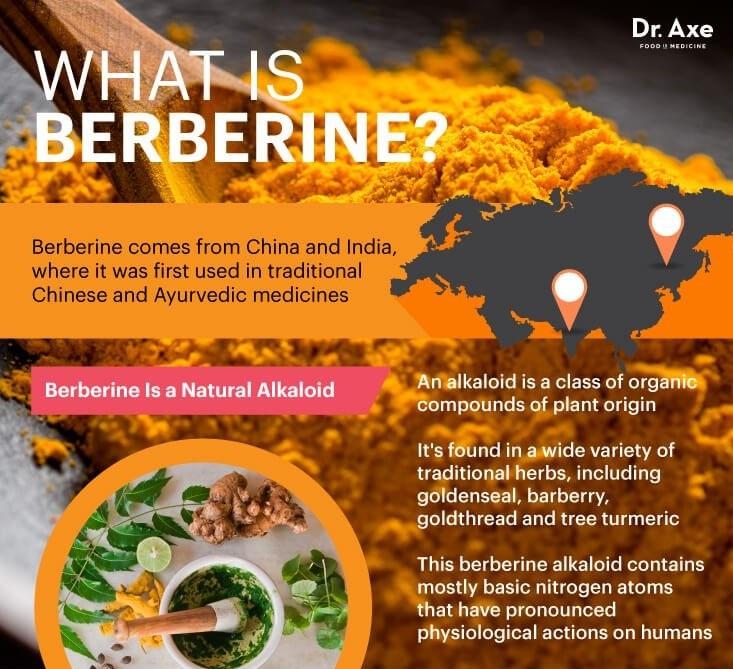 Berberine – Thần dược đối với cơ thể