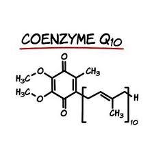 Vai trò của Coenzyme Q10 đối với cơ thể