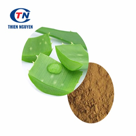 Aloe Vera Extract - Chiết Xuất Lô Hội