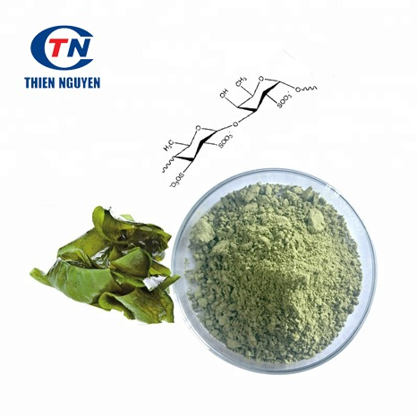 Brown Sea Weed Extract – Chiết Xuất Rong Biển Nâu