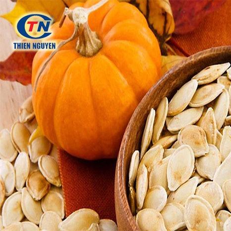 Chiết Xuất Hạt Bí Ngô - Pumpkin Seed Extract