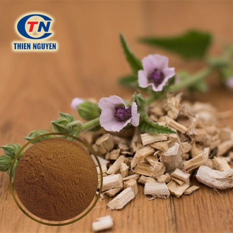Chiết xuất rễ Marshmallow - Marshmallow root extract