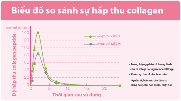 Fish Collagen so sanh su hap thu
