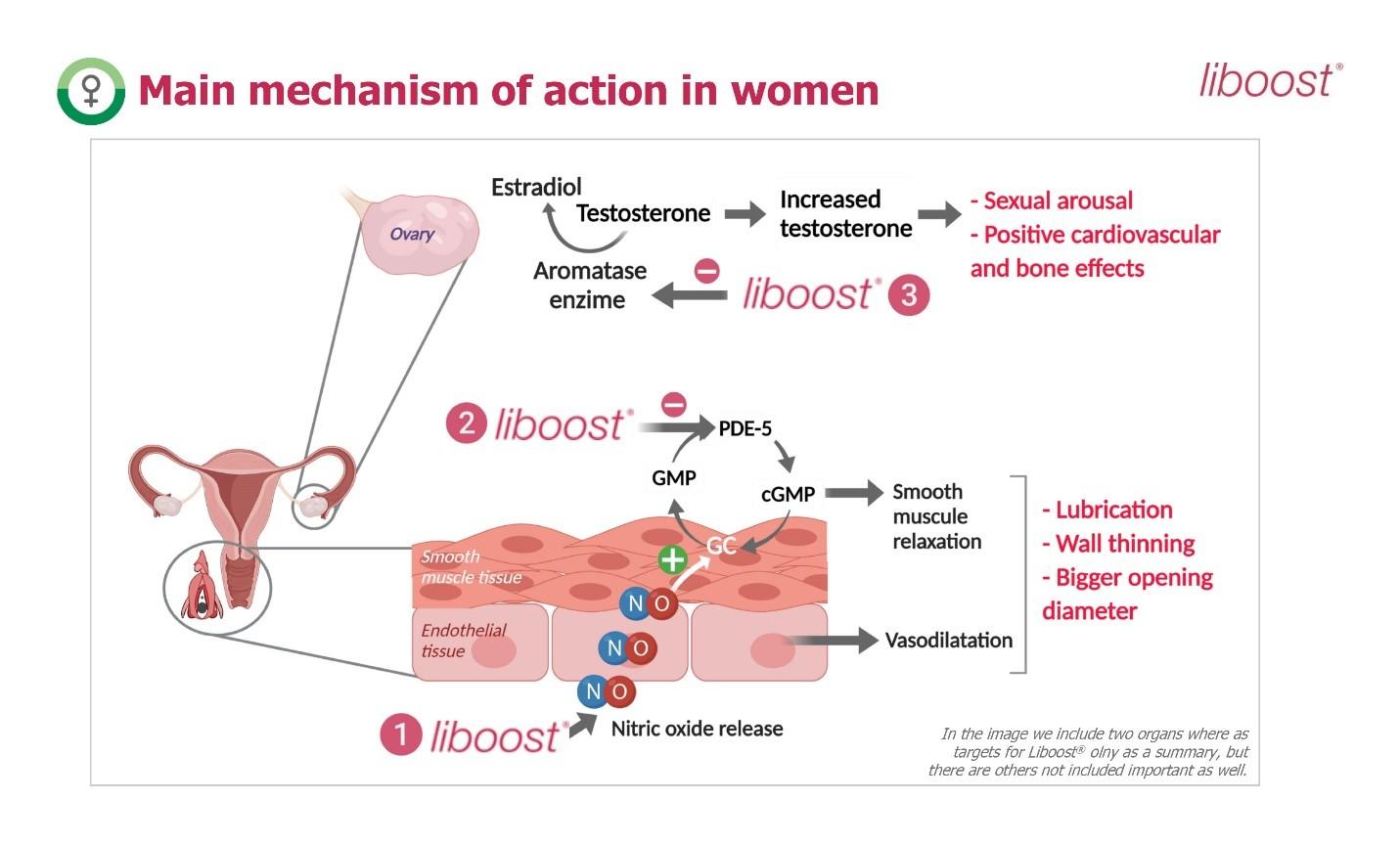 Liboost®- Nguyên liệu giúp cải thiện ham muốn tình dục ở phụ nữ