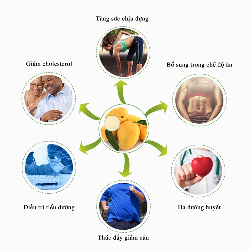 mango extratc, chiết xuất xoài, chiết xuất lá xoài, mangiferin, tác dụng mangiferin