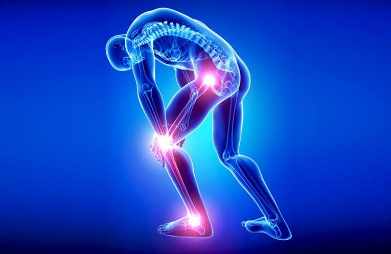 Meriva® với tác dụng giảm đau 1