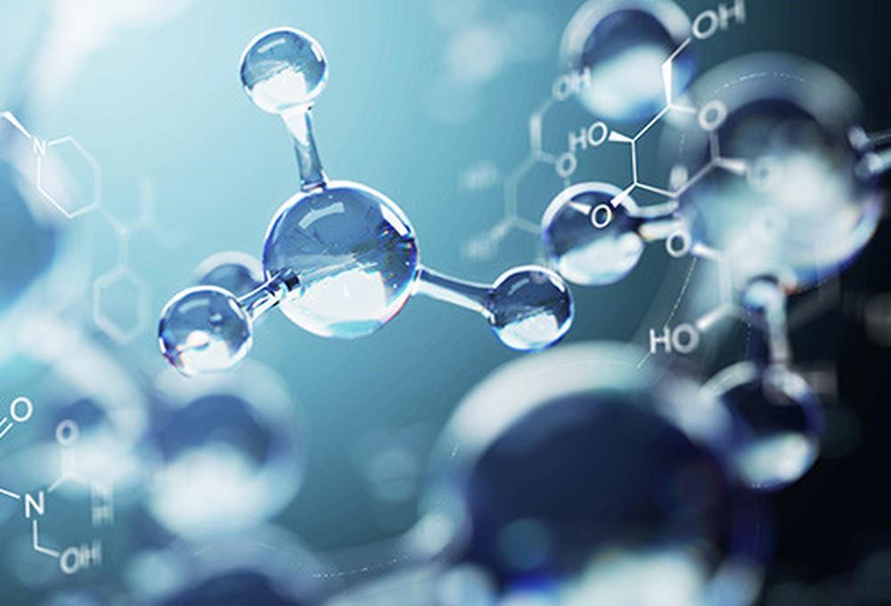 Silybin trong Silymarin giúp chống oxy hóa