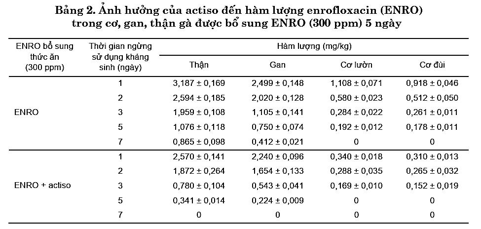 Kết quả nghiên cứu về tác dụng đào thải kháng sinh của Cao Atiso trên gà 2