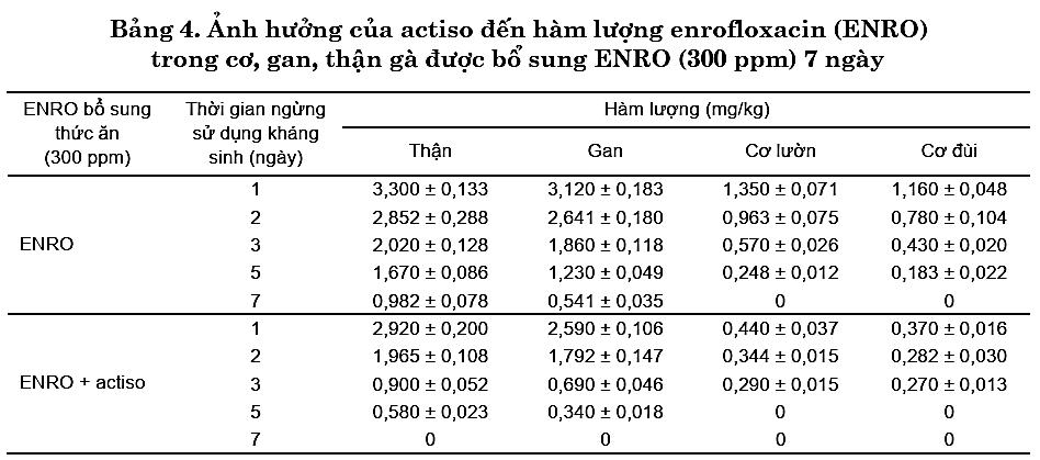 Kết quả nghiên cứu về tác dụng đào thải kháng sinh của Cao Atiso trên gà 4