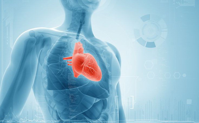 Coenzym Q10 giảm triệu chứng suy tim