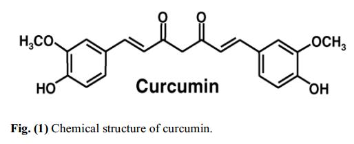 Curcumin và ung thư gan