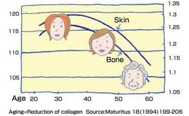 Collagen giảm dần khi độ tuôi tăng dần