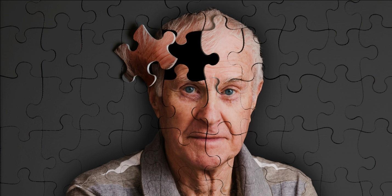 Ginkgo biloba - Giải pháp cho chứng suy giảm trí nhớ