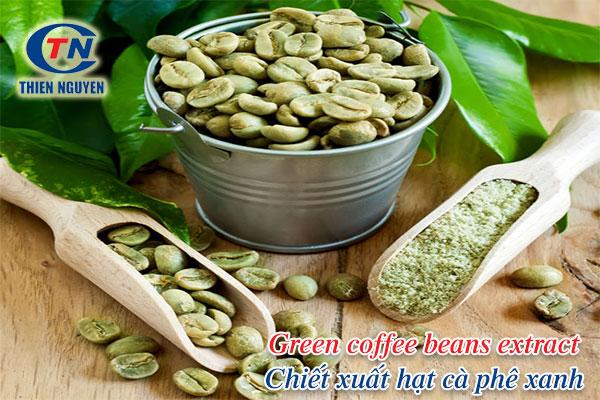 Green coffee beans extract - Chiết xuất hạt cà phê xanh