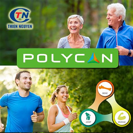 nguyên liệu xương khớp polycan