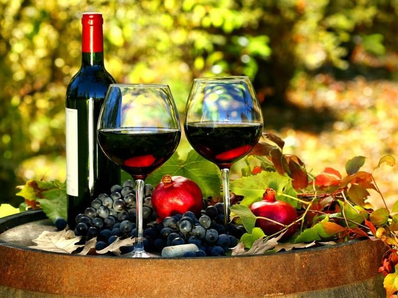 chiết xuất nho đỏ red vine leaf extract điều trị suy giãn tĩnh mạch 2