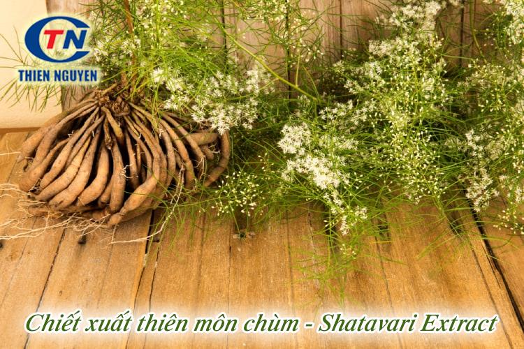 chiết xuất thiên môn chùm shavatari extract