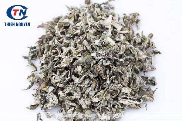 Thành phần có trong Vine tea extract